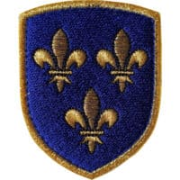 Blason patch écusson Royaume de france fil d'or